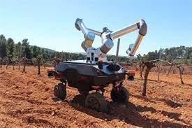 Ρομπότ για την αμπελουργία